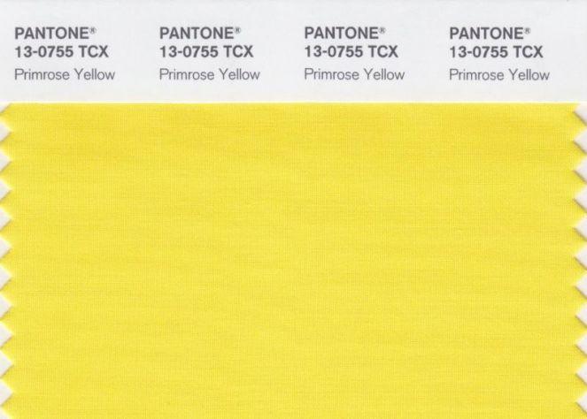 2-primrose-yellow